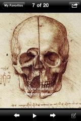 sc_2_anatomy_drawing