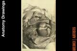 sc_7_anatomy_drawing