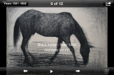 sc_5_seurat_drawing